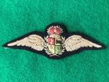 WWII South African Air Force Pilot Brevet